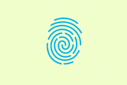 Fingerprints Requirements