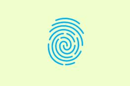 Fingerprints Requirements