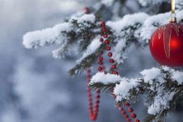 Christmas Closure Notification