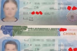 Chinese Visa Application - update
